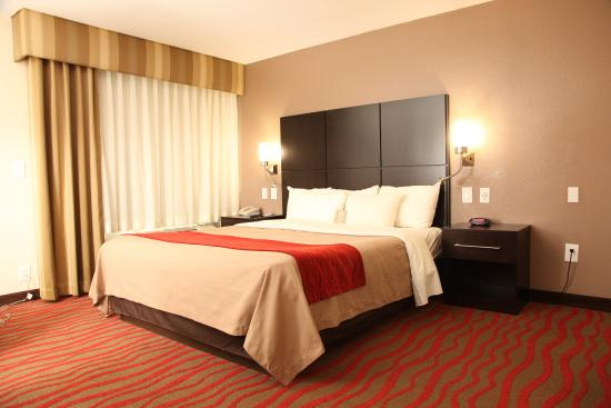 Comfort Inn - Los Angeles / West Sunset Blvd.: ONE KING SIZE BED