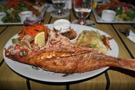 Carribean Grilled Flavors: Snapper