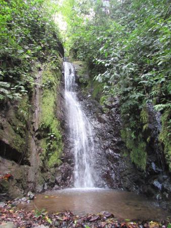 Golfito National Wildlife Refuge : Waterfall