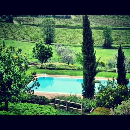 Hotel Villa Ducci: Vista de la pisicina