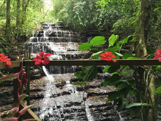 Cascadas Farallas Waterfall Villas