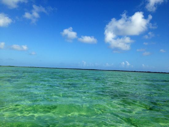 Bungalos Costa del Sol : Fishing the flats