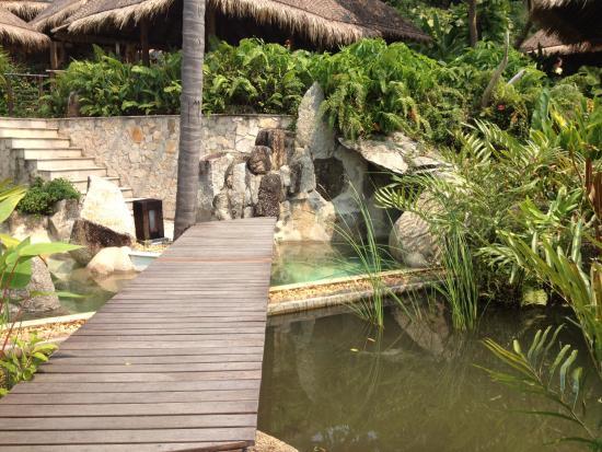 Laem Set, Ταϊλάνδη: Walk over the lily pool