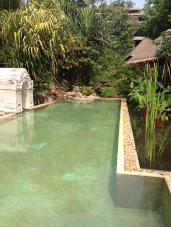 Laem Set, Thailand: Relax over the lily pools and infinity swim pool