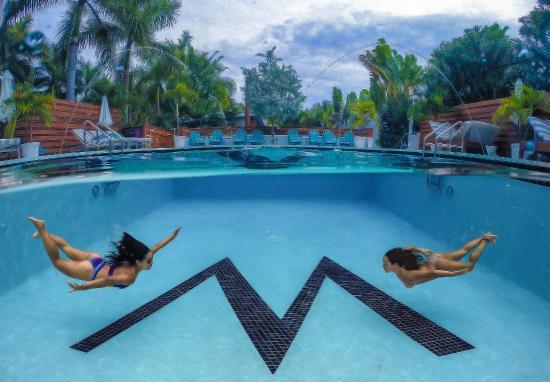 The Marseilles Hotel Miami Reviews