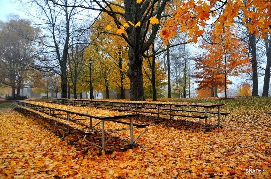 Upper Queen's Park