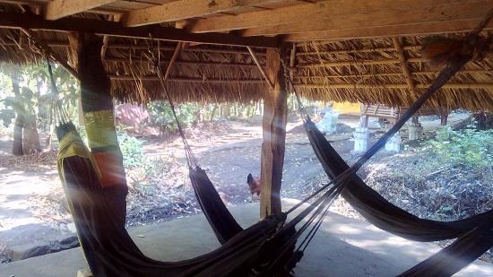 Santa Cruz, Nicaragua: Hammocks room 4$ per night