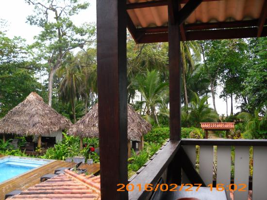 Jungle, beach, great service, wonderful food, hospitable staff, gorgeous views, awesome rooms - perfection!