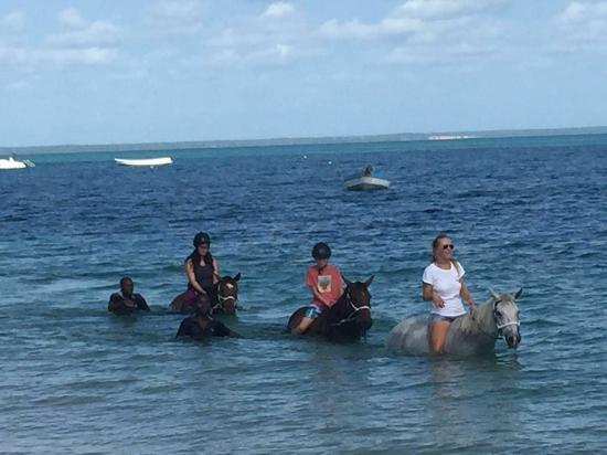 Zdjęcie andBeyond Benguerra Island