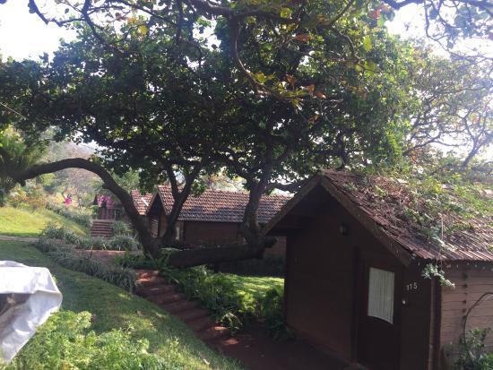 Stonewater Eco Resort: photo6.jpg