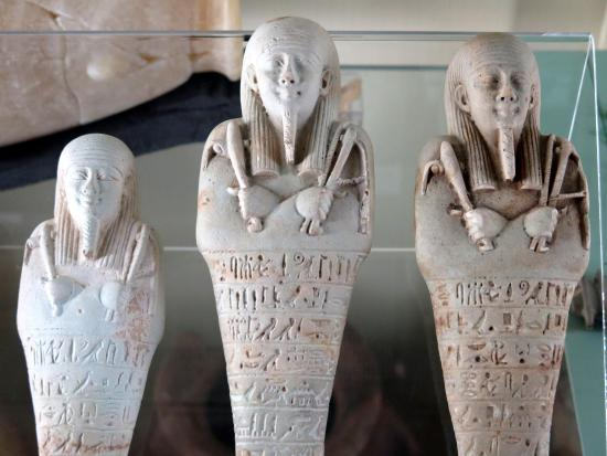 ‪Petrie Museum of Egyptian Archaeology‬
