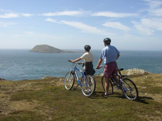Llyn Cycle Hire: Overlooking Bardsey