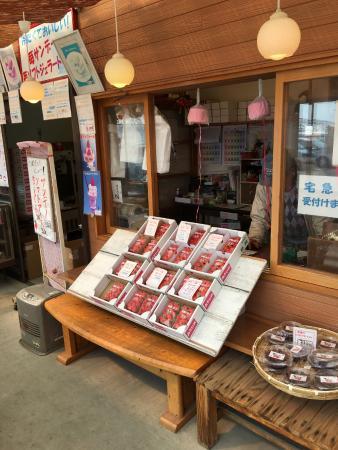 Mt.Kuno Strawberry Picking : 持ち帰り用のイチゴも売ってます。