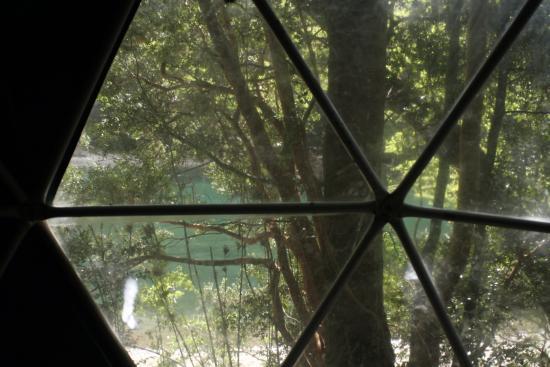 Rio Arrayanes Campamento Agreste: Vista desde la ventana del domo, a orillas del río Arrayanes