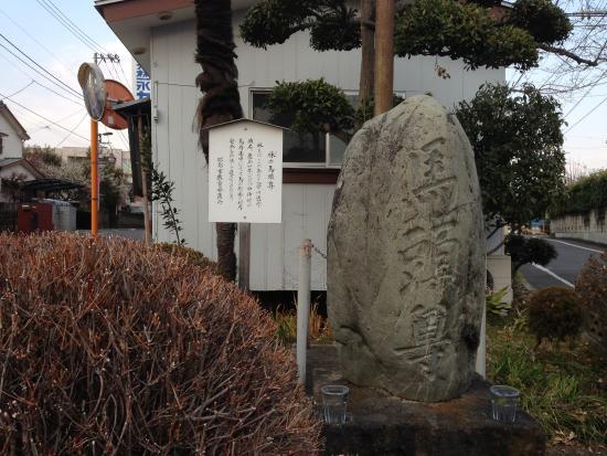 Hayashi no Batoson