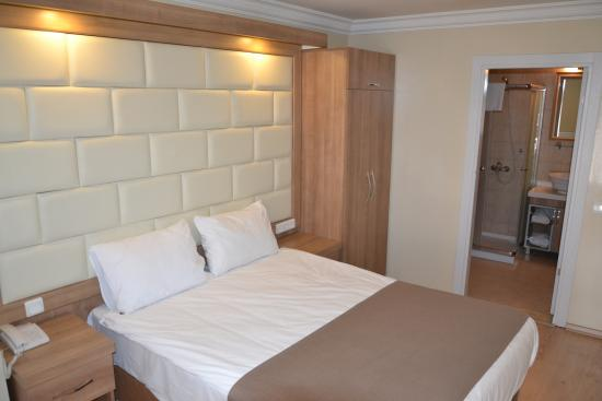 Kafkas Hotel Istanbul: Double Room
