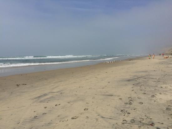 peace picture of black s beach san diego tripadvisor rh tripadvisor com