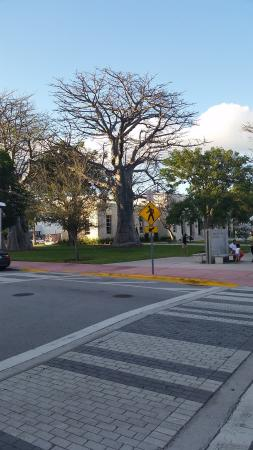 Sbh South Beach Hotel Park Across The Street