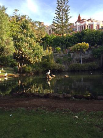 Озеро на территории отеля