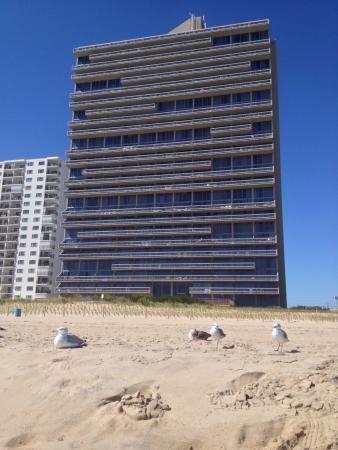 Century 1 Condominium