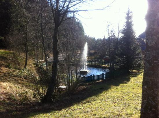 Hotel Schoene Aussicht: Fontaine de l'hôtel