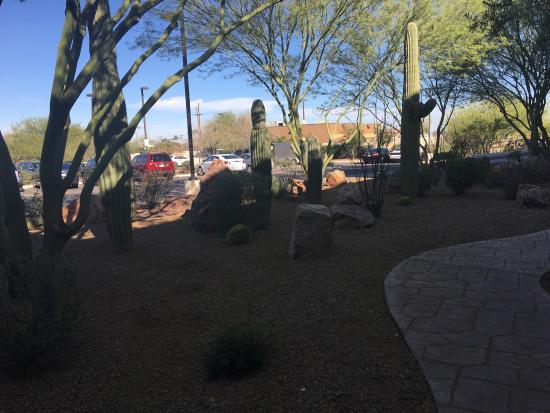 Picture of hilton garden inn tucson airport tucson tripadvisor for Hilton garden inn tucson arizona