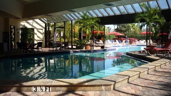 Hotels In Tampa Flordia With Smoking Rooms