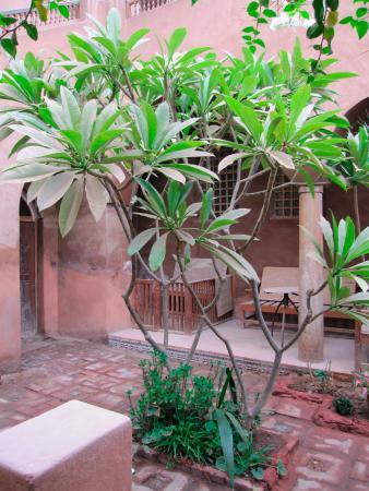 Ramses Wissa Wassef Art Centre
