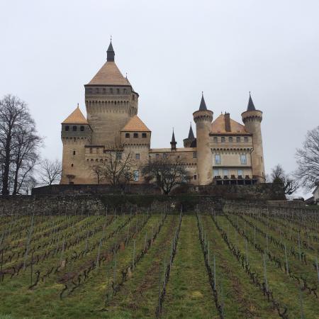 Chateau de Vufflens