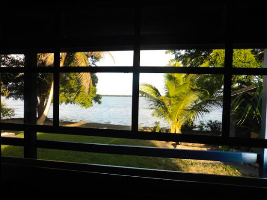 Crooked Tree Lodge: View out our front window
