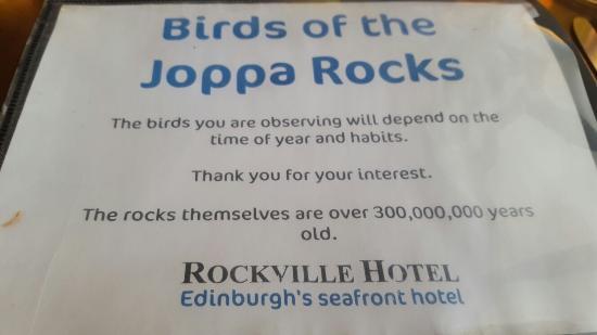 Rockville Hotel: 20160305_170955_large.jpg