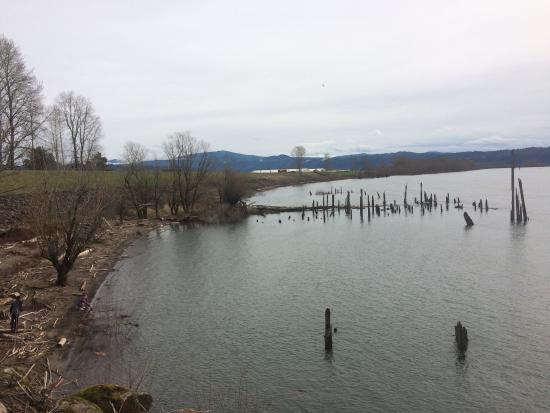 Washougal, WA: Steigerwald Lake National Wildlife Refuge