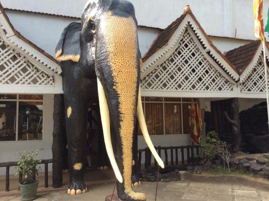 Hotel Pinnalanda