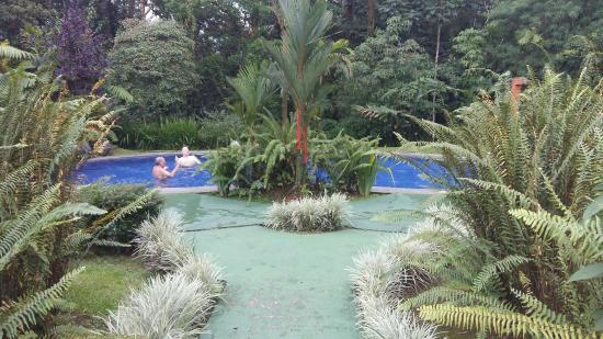 Catarata Eco Lodge S.A: IMG-20160303-WA0004_large.jpg