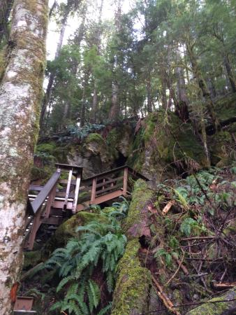 Horne Lake Caves Provincial Park: photo0.jpg