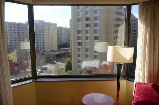 Crystal Gateway Marriott: My room 547