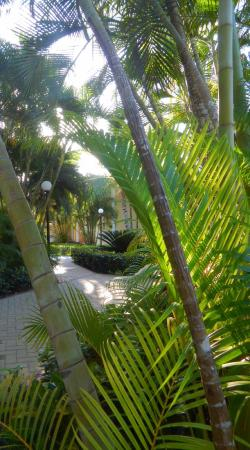 Grand Bahia Principe El Portillo: Lush grounds