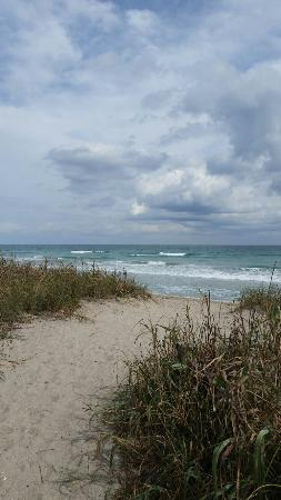 Jensen Beach, FL: Normandy Beach