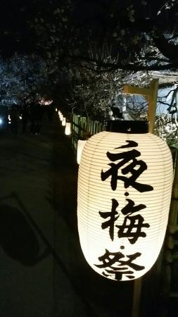 Mito Ume Blossom Matsuri