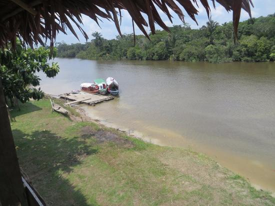 Amazon Rainforest Lodge: Muelle del río