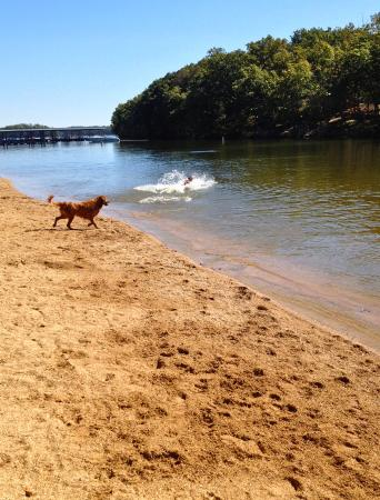Kaiser, MO: Jack & Winston at Forbidden Beach