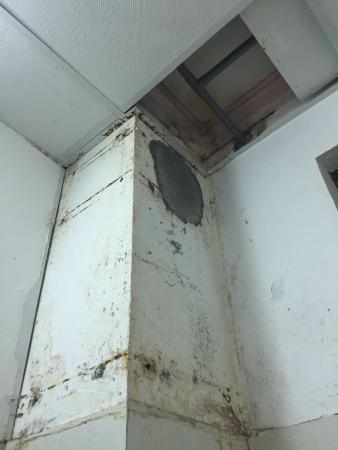 mold on walls in bedroom mold on the walls of the bedroom picture of