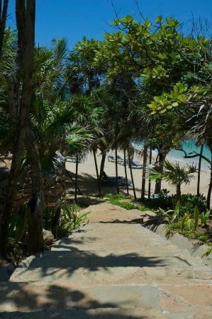 写真Paya Bay Resort枚
