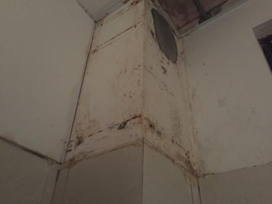 Green Field Hotel: Mould on the wall very dangerous and your health