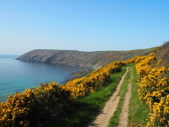 Walking towards the Dodman along the cliff path above Vault beach.