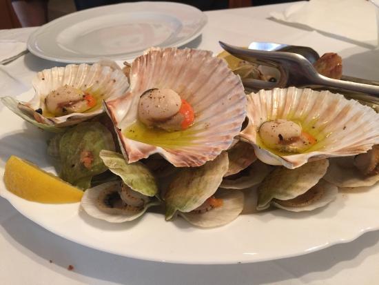 Brtonigla, Kroatien: Bel locale a conduzione familiare! Ottimi antipasti freddi e ii pesci fatti alla brace. Fusi con