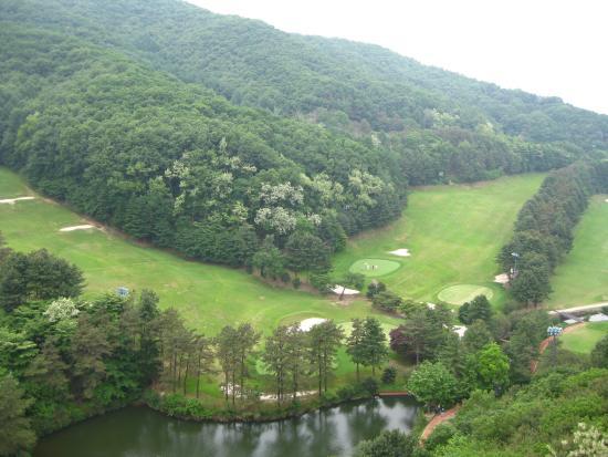 Yangji Pine Resort