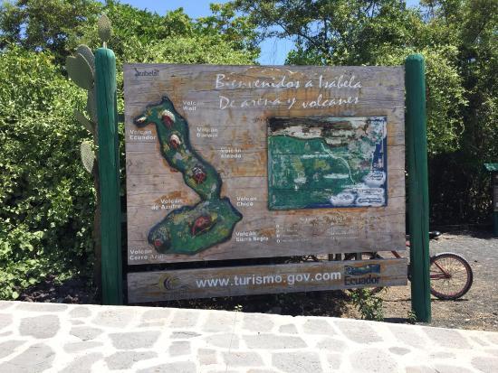 Puerto Villamil, Equador: photo4.jpg