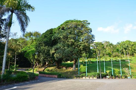 Taman Tumbina