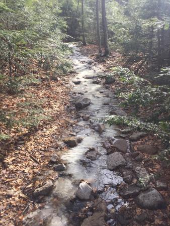Lye Brook Falls: photo5.jpg